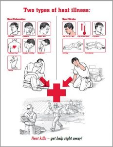 Link to an OSHA PDF download about preventing heat illness. The workplace poster compares heat stroke vs heat exhaustion, and it mentions heat cramps.