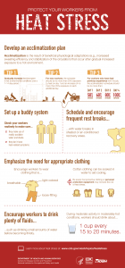 Infographic: Protect Your Workers from Heat Stress. Steps include acclimatization, buddy system, rest breaks, clothing, drink fluids.